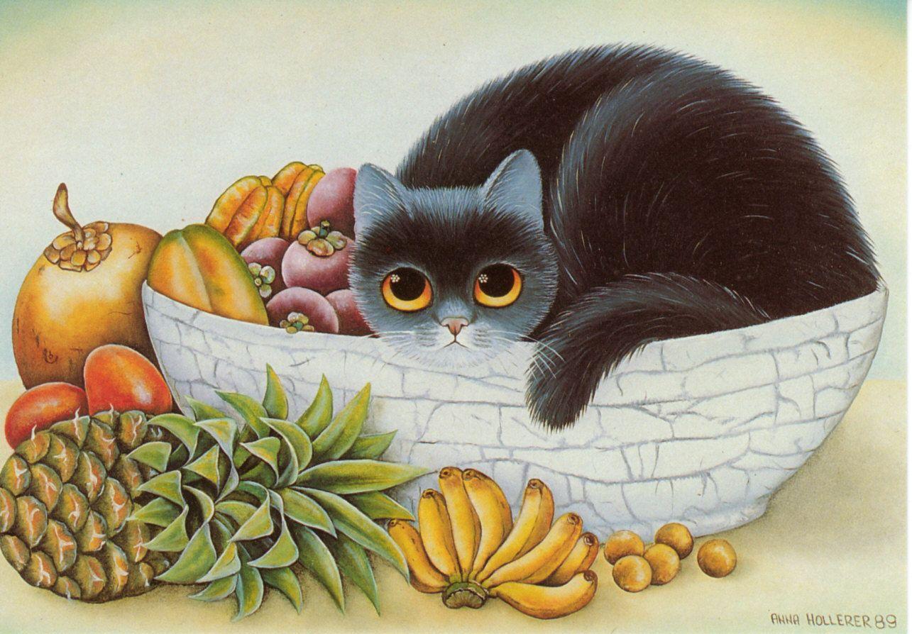 Картинки котики с фруктами свободное время
