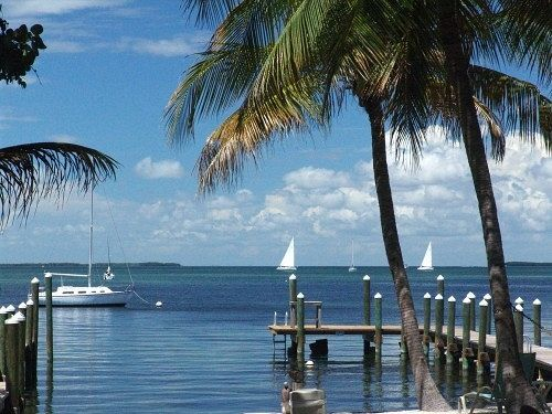 Sorry We Couldn T Find The Page You Were Looking For Vacation Memories Key Largo Vacation