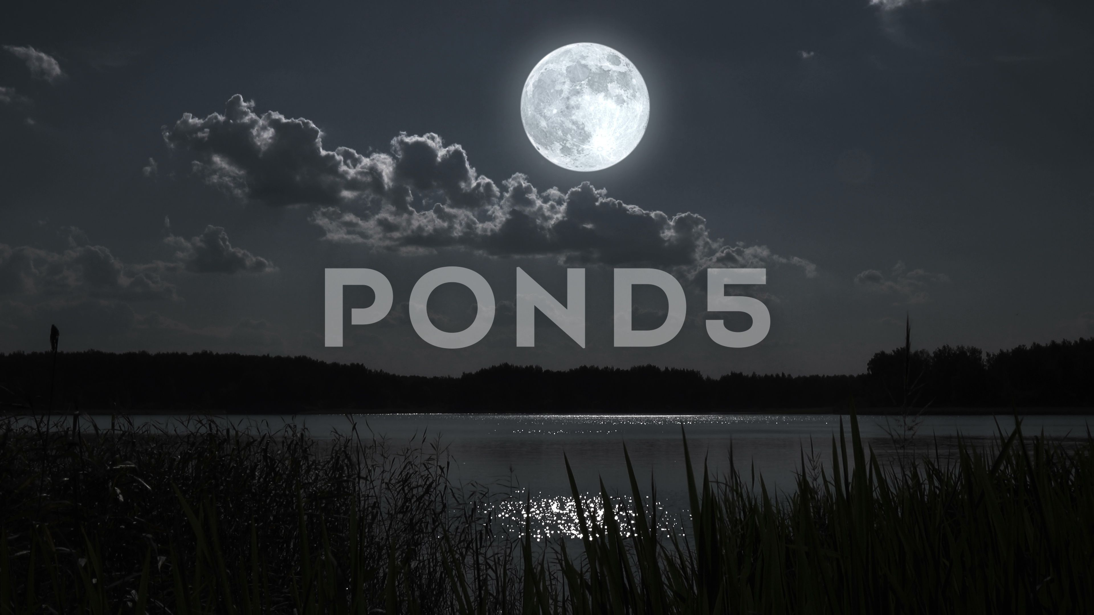Nature Full Moon Night Landscape With Forest Lake Stock Footage Ad Moon Night Nature Full Night Landscape Full Moon Night Forest Lake
