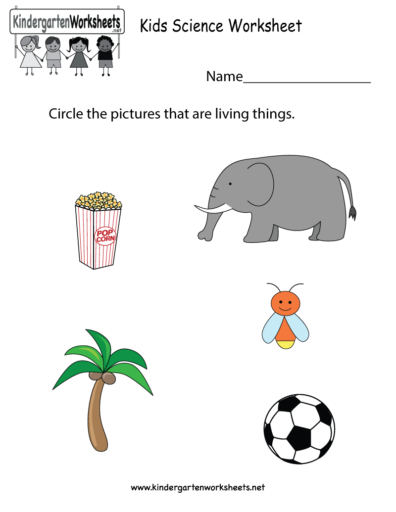 Kindergarten Kids Science Worksheet Printable | Science Worksheets ...