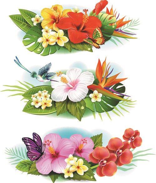 Flowers Borders Vector Set 04 Tropical Flower Tattoos Vector Flowers Flower Painting