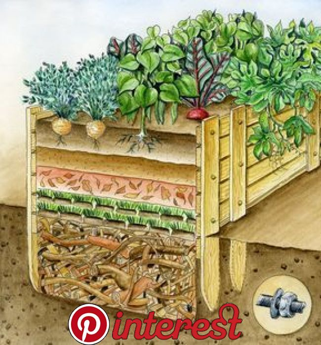 Fill The Raised Bed These Layers Increase Harvest Success Vegetable Garden Design Raised Beds Raised Garden Beds