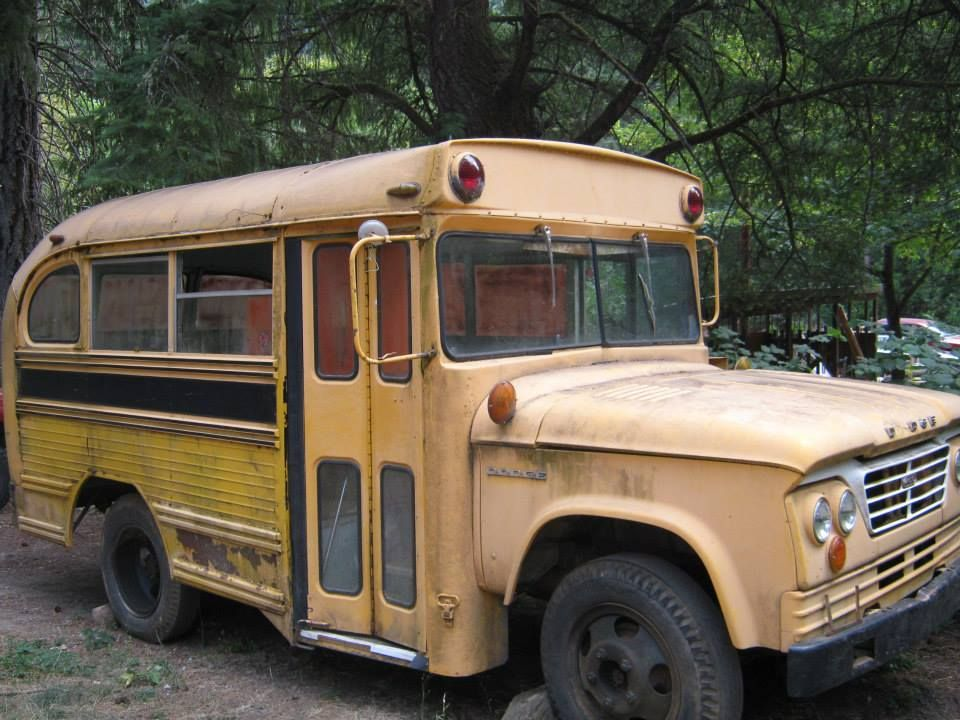 Cool Old Dodge School Bus With Images School Bus School Bus