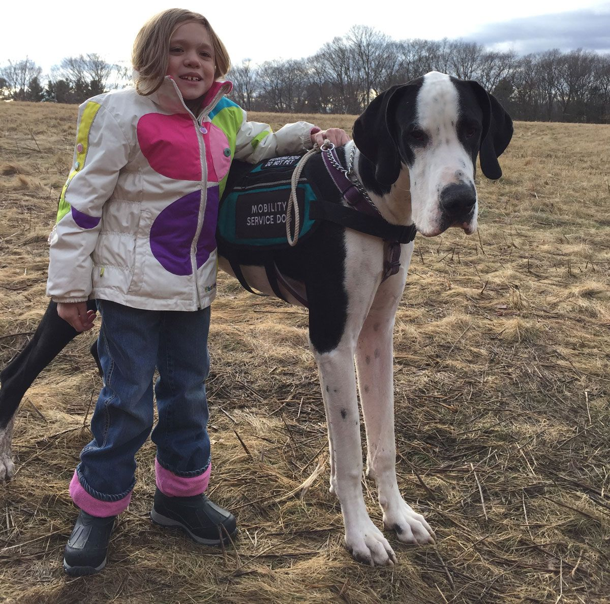 Great Dane Helps Local Fourth Grader With Rare Disease Service