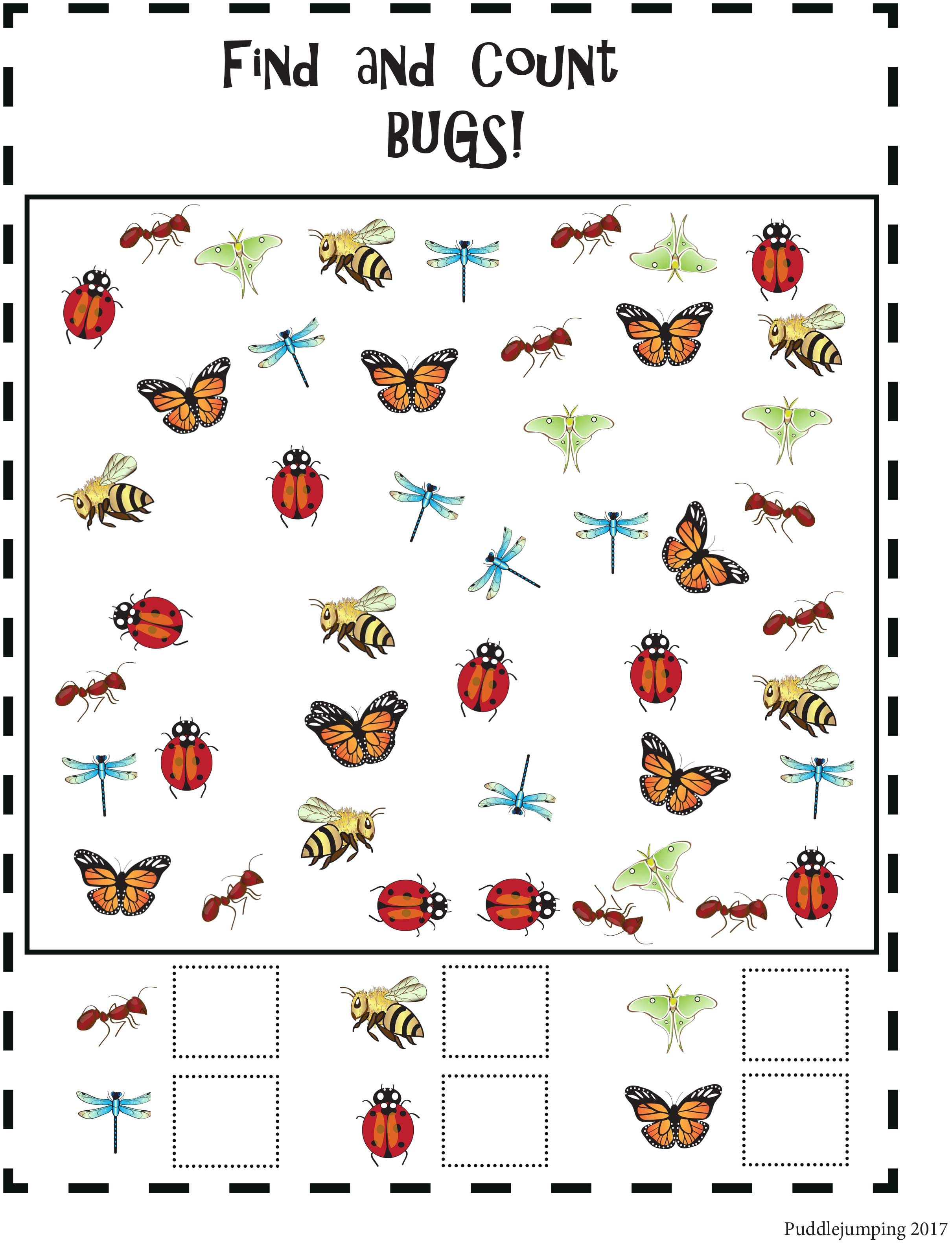 Fun With Bugs Find And Count Count And Color Following Directions From P Insect Activities Math Activities Preschool Kindergarten Math Worksheets Printables [ 3168 x 2421 Pixel ]