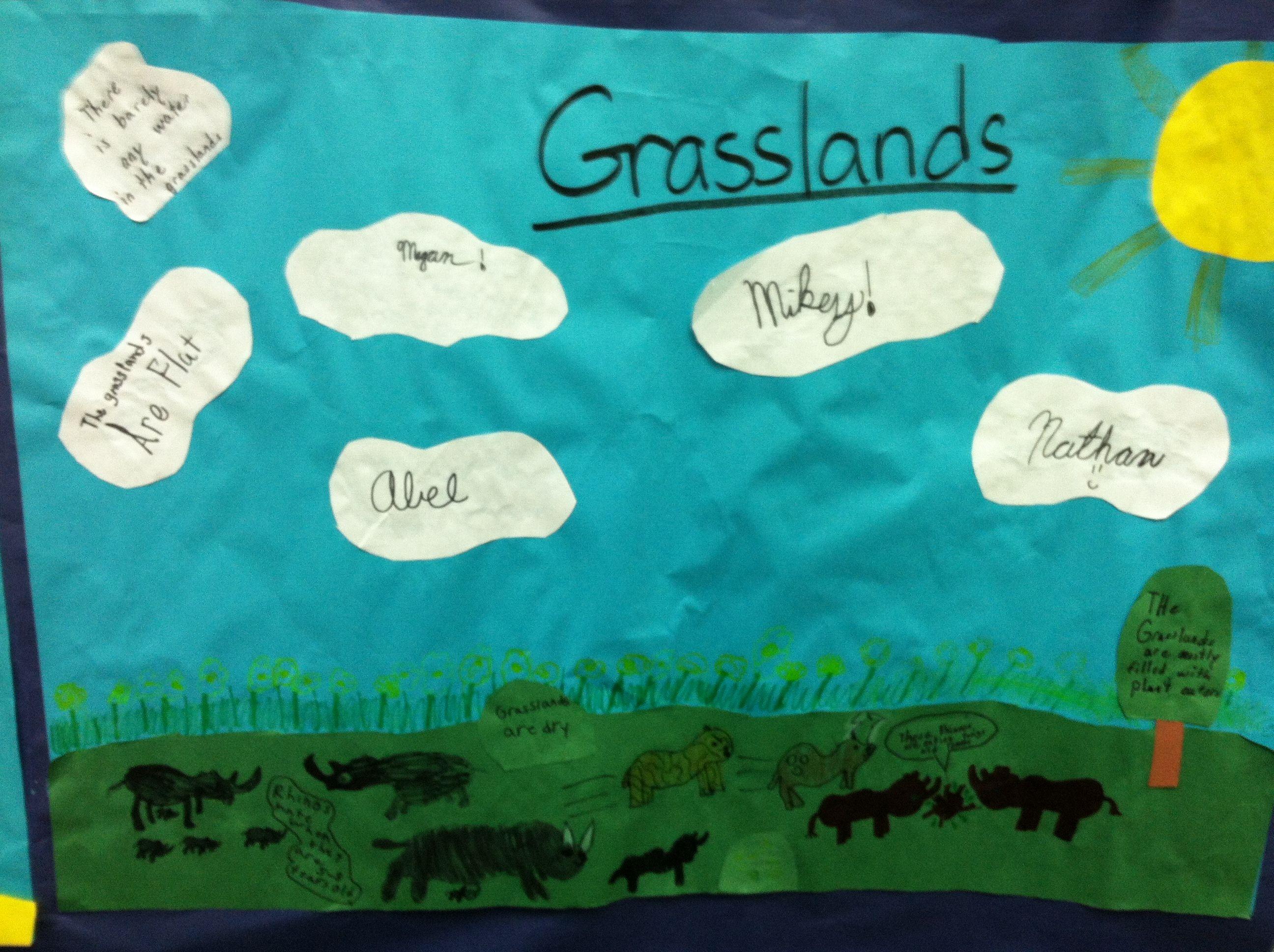Student Created Animal Habitats Grasslands