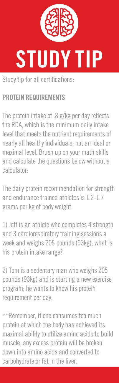 Protein Requirements Equation Es Ch4 Ace Personal Trainer