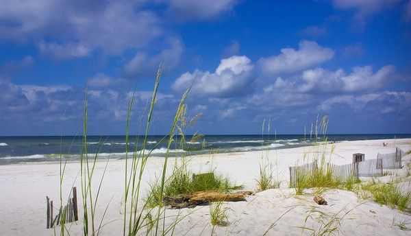Gulf Shores, Alabama Summer 2012 and 2015.