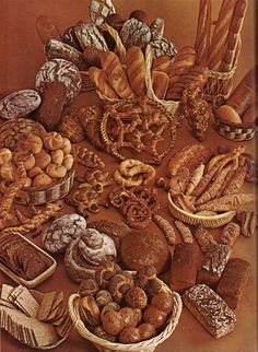 German bread, cookie and pastry recipies-look through this and see what's possible...