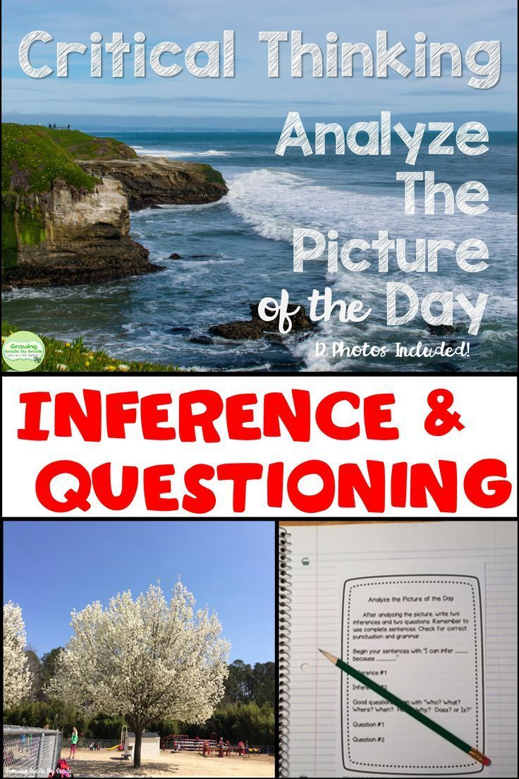 Picture of the Day Critical Thinking Activity | Critical thinking ...
