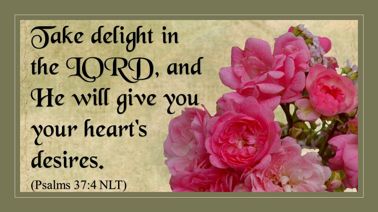 Delight in the LORD - http://blog.peacebewithu.com/delight-in-the-lord/