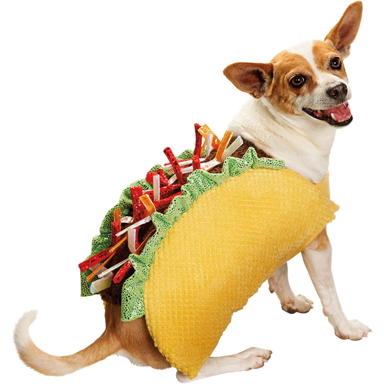 Zinggia! Tuna's Taco Delight | Handmade Halloween Dog ... |Taco Dog Halloween Costume Pattern