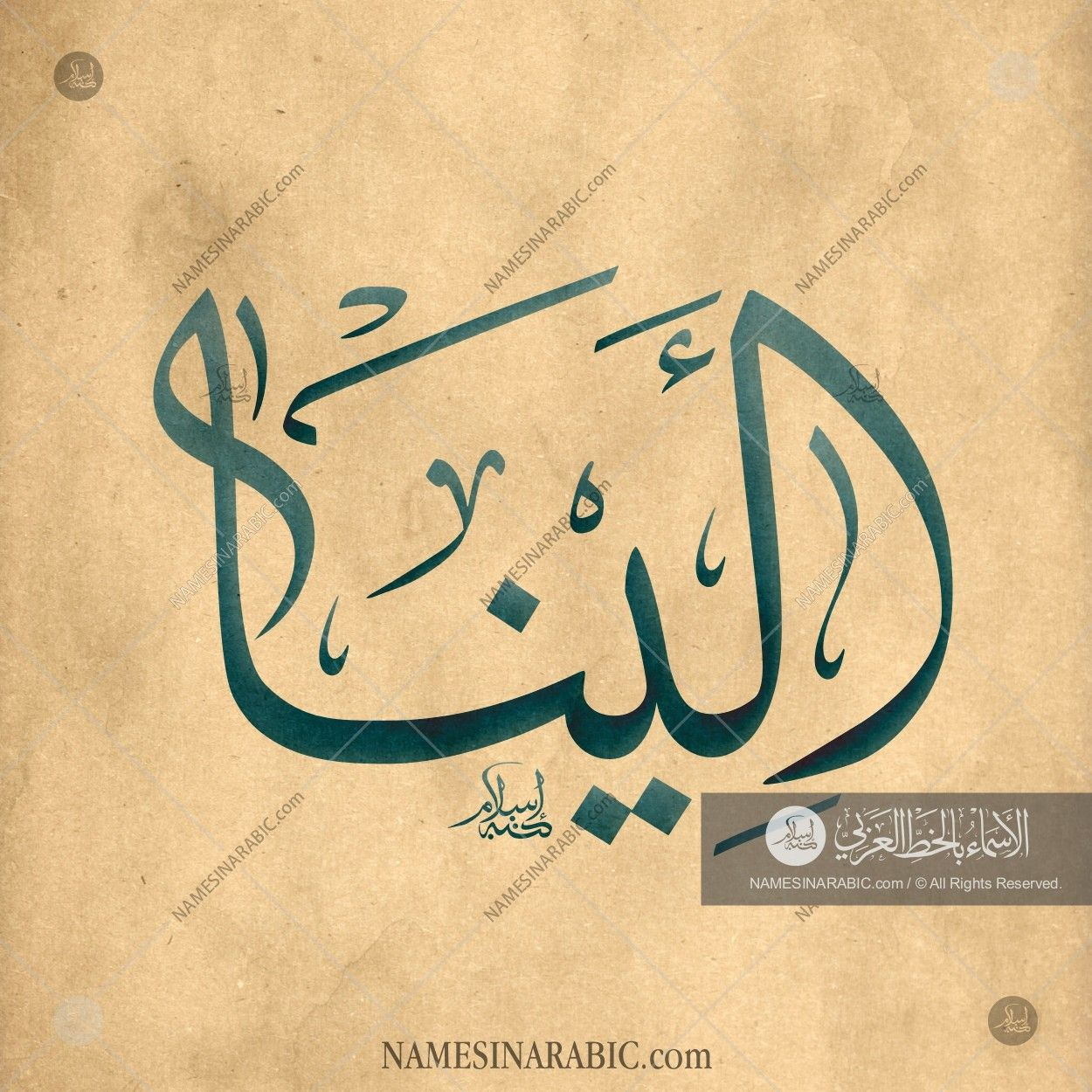 Alina الينا Names In Arabic Calligraphy Name 4875 Calligraphy Name Calligraphy Arabic Calligraphy