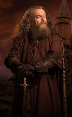 Godric Gryffindor Harry Potter Portraits Harry Potter Wiki Always Harry Potter