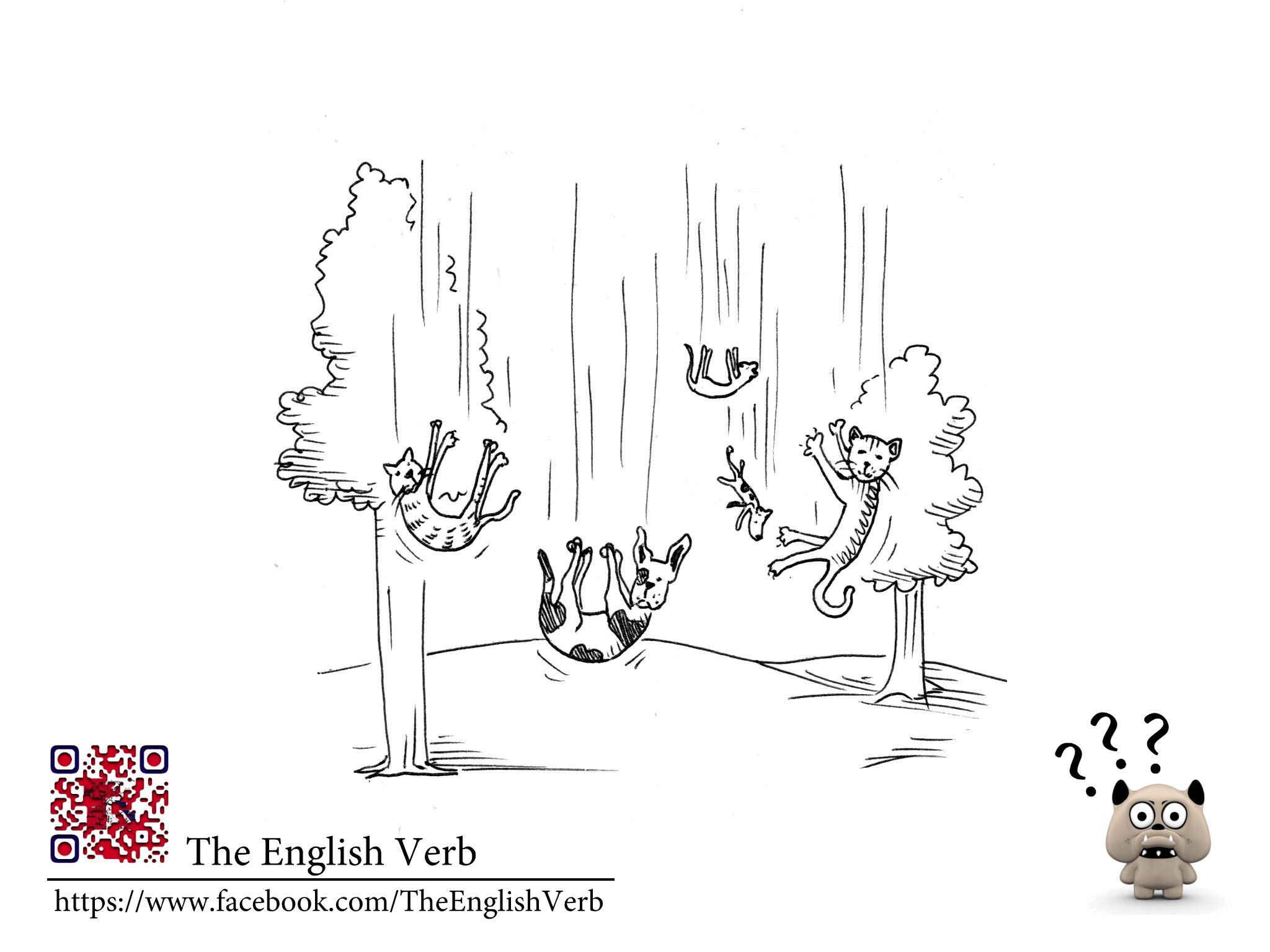 It's raining cats and dogs English idioms, Idioms