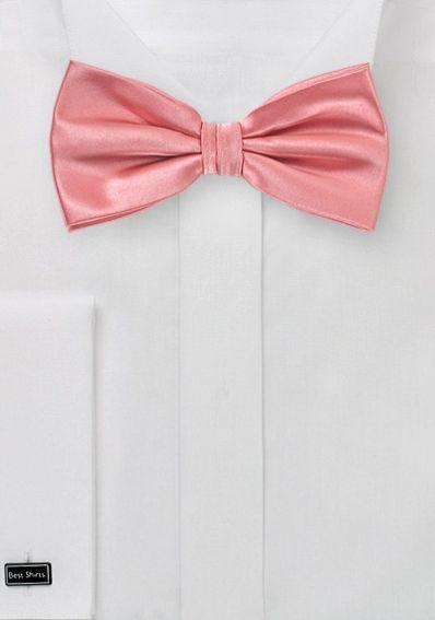 Fliege Unifarben Pink Mit Bildern Rosa Fliege Blaue Fliege Fliegen Fur Manner