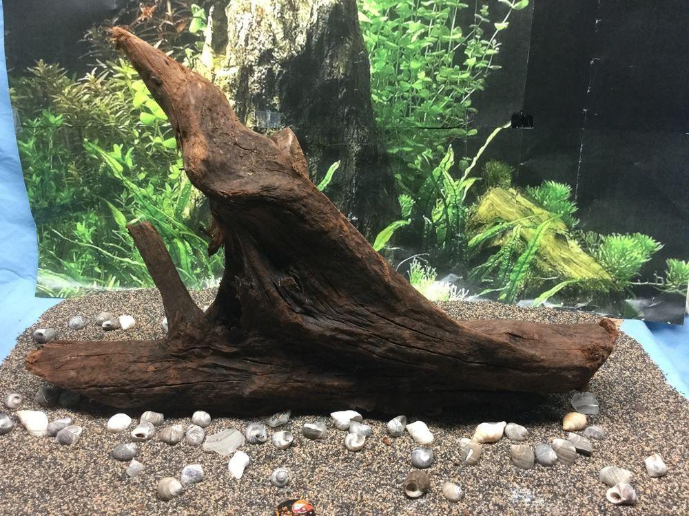 Aquarium malaysian driftwood 18 x 12 x 4 5 ebay for Driftwood for fish tank