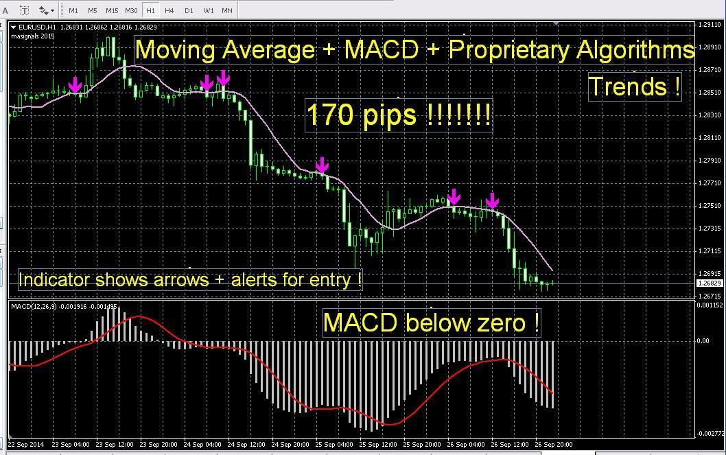 Most Accurate Forex Indicator Signals Best Proprietary Algorithms