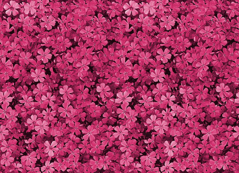 Pink floral wallpaper pattern tumblr dashboard theme floral pink floral wallpaper pattern tumblr dashboard theme floral themes mightylinksfo