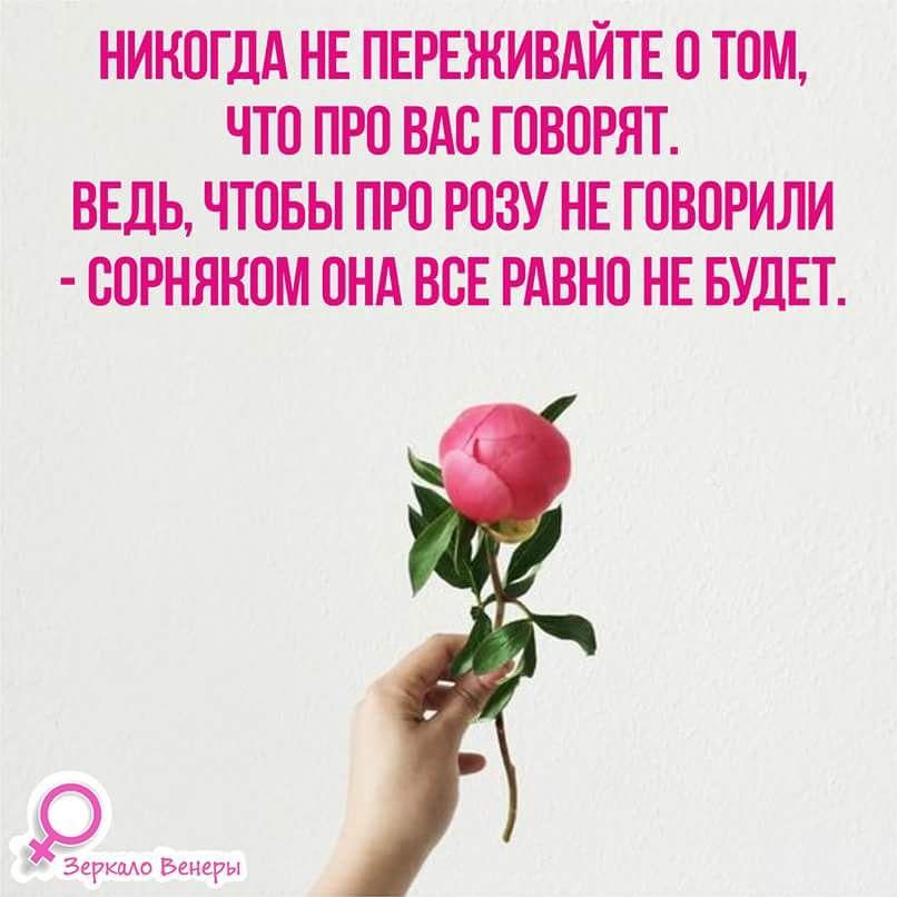 Russische Sprüche, Schöne Sprüche Zitate, Weise Worte, Bibelverse,  Emotionale Intelligenz, Beziehungen, Nachrichten, Tipps, Zitat