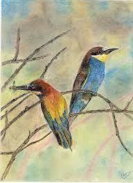 Abejarucos, visitan con frecuencias la cercanía de las colmenas, especialmente en los días de primavera con poca temperatura.