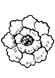 Resultado De Imagen Para Flores Para Dibujar Paginas Para Colorear De Flores Dibujos Para Colorear Dibujos
