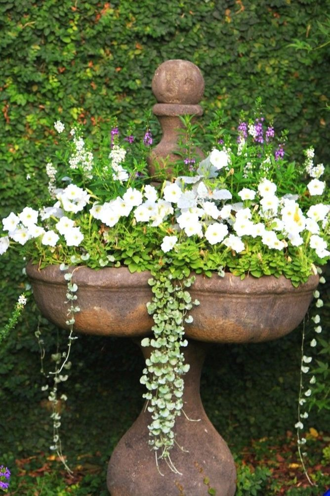 garden planters and containers #containergardening Garden and