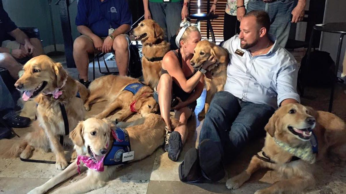 Christian Charity Sends Golden Retrievers To Comfort Orlando