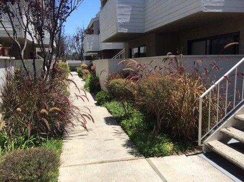 1d81fe90cb812d4e4b74ff02073c96e6 - Mar Vista Gardens Los Angeles Ca