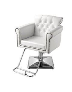 Search Results Standish Salon Goods Buy Online Today Salon Styling Chairs Salon Furniture Salon Chairs