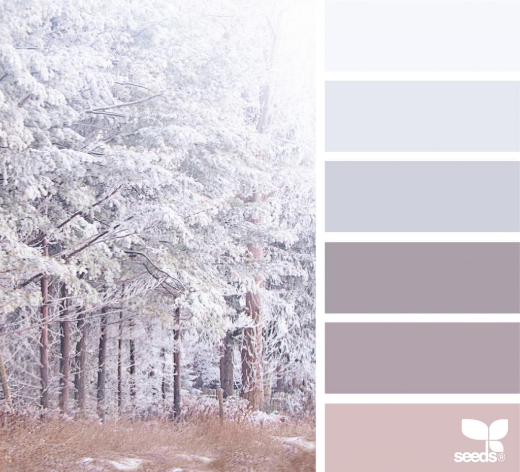 Winter Tones (design seeds)   Winter farbpaletten, Farbe