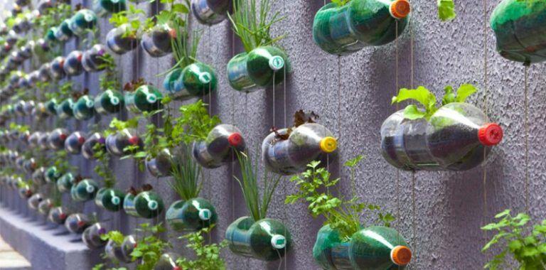 Ejemplo Huerta Vertical Jardines Verticales Como Hacer Planta De Navidad Huertos Verticales Con Botellas