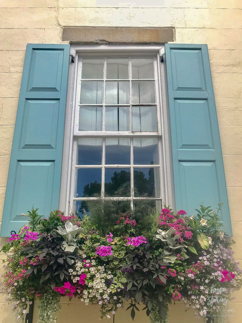 Window box ideas without flowers  flower box ideas window flower box inspiration from charleston