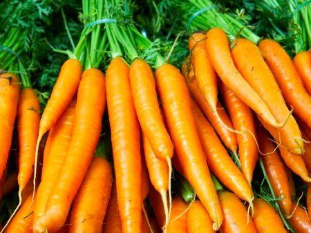 Um legume antioxidante que deve integrar o seu plano alimentar