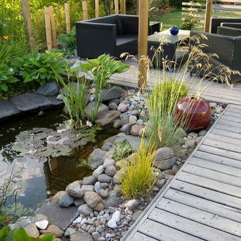 How to Build a Pond in Your Backyard in 2020   Ponds ...