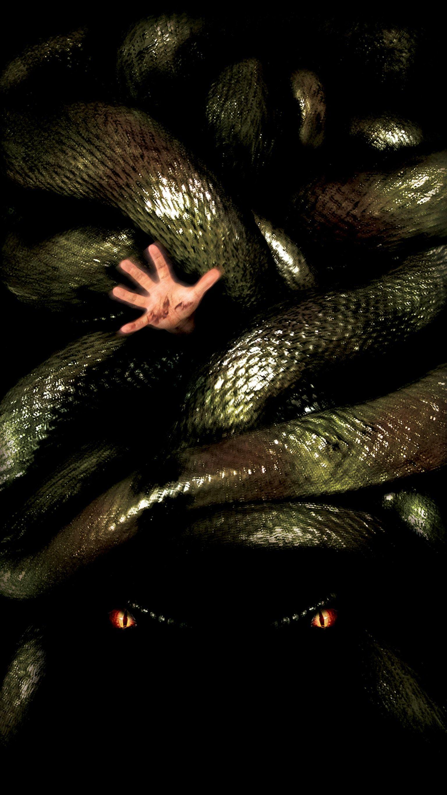 Pin Em Anaconda