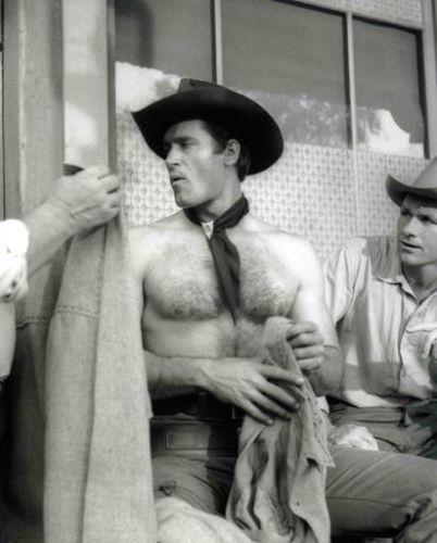 Stonewall Gazette: Classic Hunk: Ty Hardin