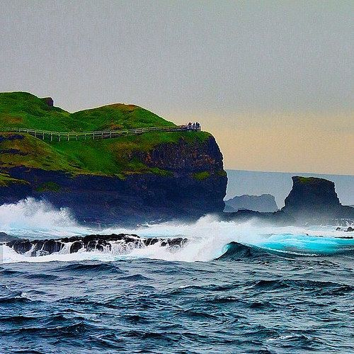 Phillip Island Australia: Phillips Island, Australia, Island