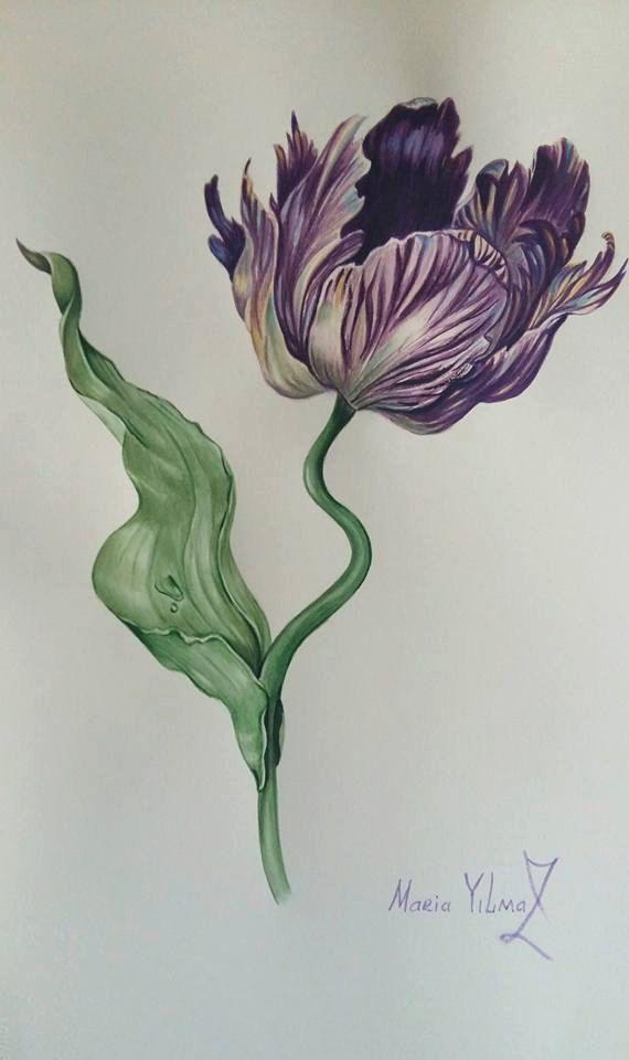Tulip от PomegranateArtMaria на Etsy