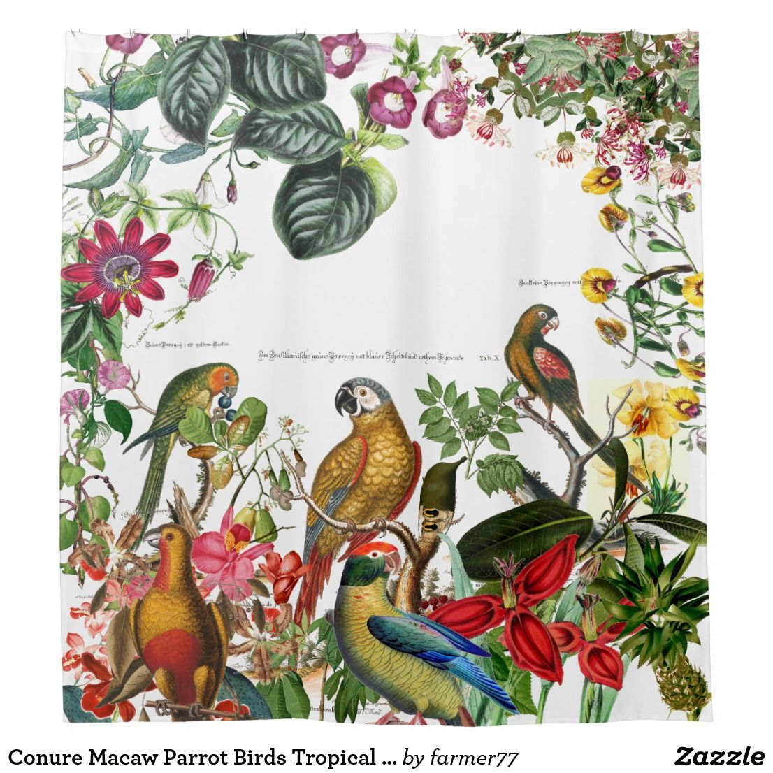 Conure Macaw Parrot Birds Tropical Shower Curtain Zazzle Com