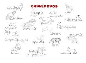 Que Puedo Hacer Hoy Animales Carnivoros Ejemplos Animales Carnivoros Animales Herbivoros Carnivoros
