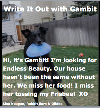 My Colorado Boy, Gambit. (RE&D) Write It Out! Lisa Keegan's novel, Rabbit Ears & Dildos coming your way soon! A Non-Fictional Journey of Self Satisfaction of Fictional Proportion! Sexy, humorous, tearful but FUN!