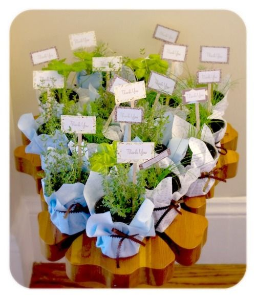 garden theme baby shower party favors we framed baby photos of
