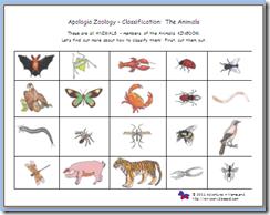 sorting/classifying vertebrates/invertebrates Apologia | Science ...