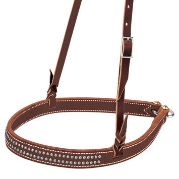 Stockman Weaver Leather Noseband. Would love for Dot!