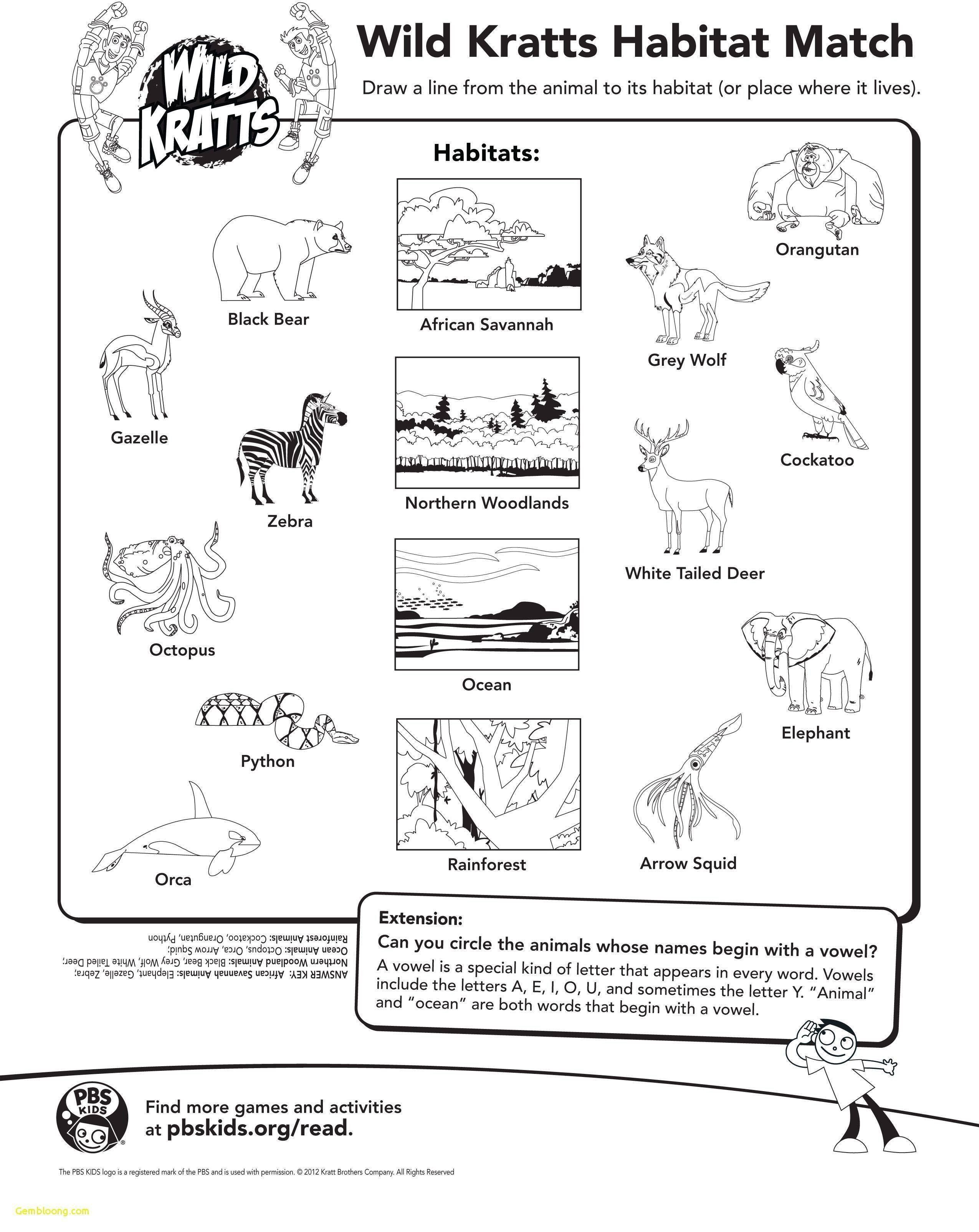 Wild Kratts Coloring Pages Elegant Wild Kratts Coloring Pages Wild Kratts Wild Kratts Birthday Wild Kratts Party [ 3210 x 2550 Pixel ]