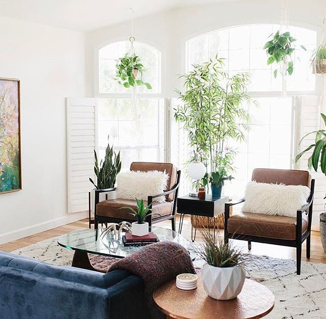 Loving The Look Achieved By In Her Living Room With Blue Velvet Sofa Leather Chairs And All Plants This Is Perfect Livable