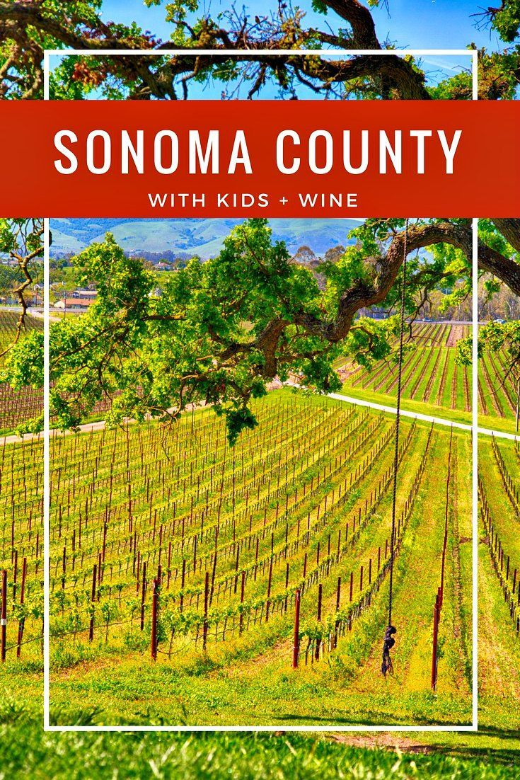 The bucolic rolling hills and vineyards of Sonoma County can be a playground for families with kids. How to enjoy Sonoma County with kids and wine. | family travel | california travel