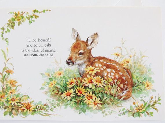 Woodland happy birthday card with baby deer fawn and daisies woodland happy birthday card with baby deer fawn and daisies vintage unused bookmarktalkfo Image collections