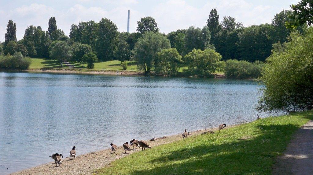 Campingplatz Köln Fühlinger See